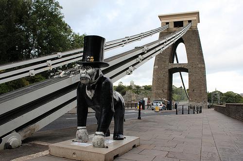Bristol Zoo's gorillas campaign wows judges at prestigious awards