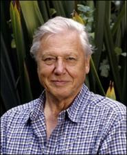 Bristol to bestow freedom of the city on veteran broadcaster Sir David Attenborough
