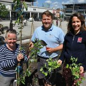 Firms urged to join urban gardening revolution taking root at Harbourside
