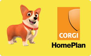 Second acquisition for fast-growing OVO as it snaps up Corgi HomePlan