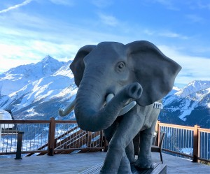 Swindon Business News Travel: Skiing in La Rosière, the French resort where Hannibal – and his elephants – crossed the Alps