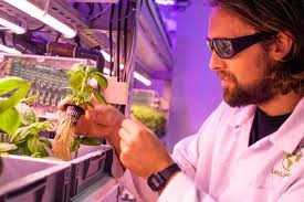 Bristol food tech innovator to open indoor farms to help city's crisis-hit food banks