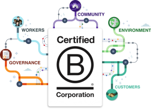 Wild West becomes latest Bristol firm to attain 'game-changing' B Corp status