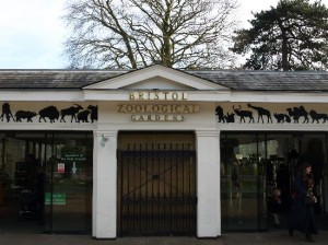 Chamber of Commerce backs Bristol Zoo's relocation to city's outskirts