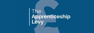 Apprenticeship Levy payers urged to support scheme that boosts training in small firms