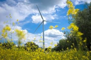 Energy efficiency funding offered to community buildings by renewables investment firm